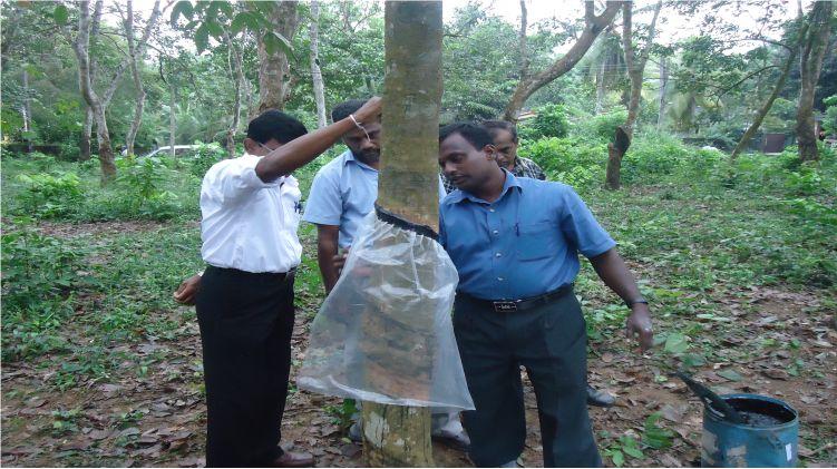 NATIONAL DIPLOMA IN PLANTATION MANAGEMENT (NDPM)