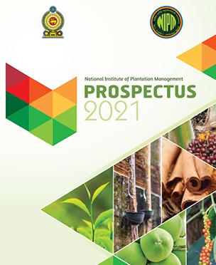Prospectors 2020